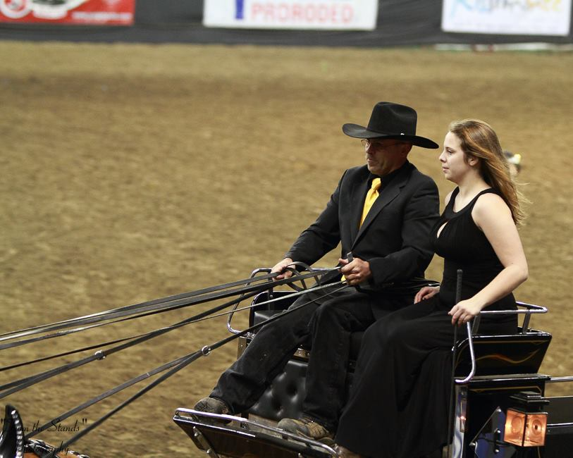Shanahan Haflingers placed first in the six horse hitch at the NAILE.